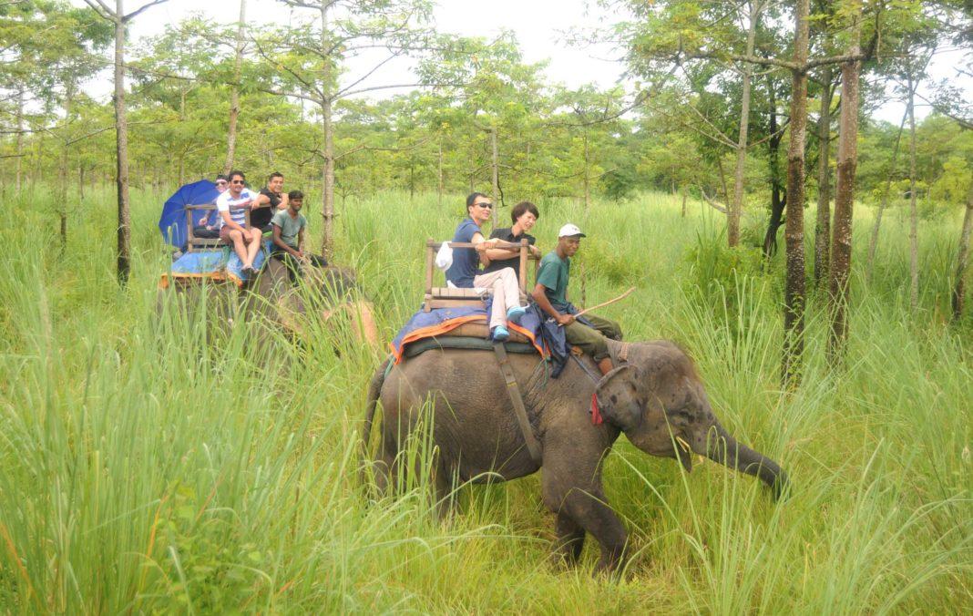 Chitwan National Park – Himalaya Seekers Treks & Expedition